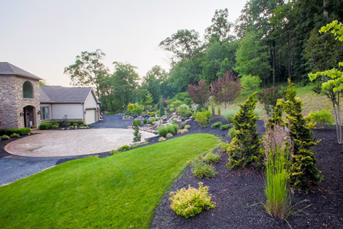 5 Simple Things to Keep Your Lawn Looking Good this Summer