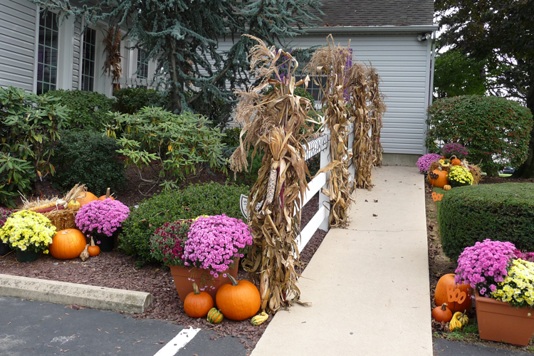 Seasonal Services - Fall Decorating