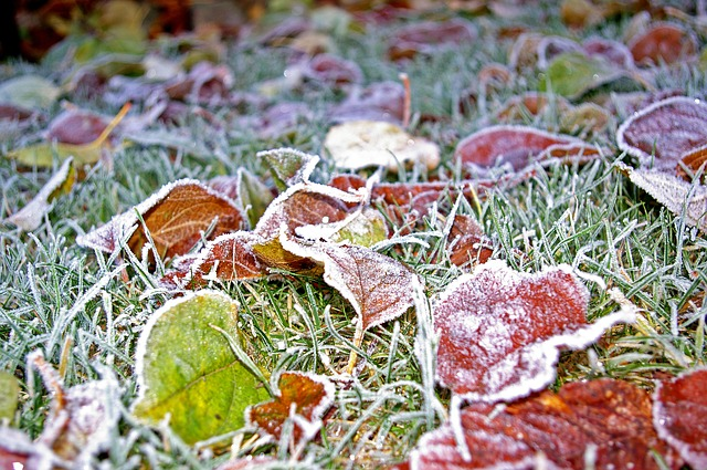 The Essential Outdoor Prep… for Winter